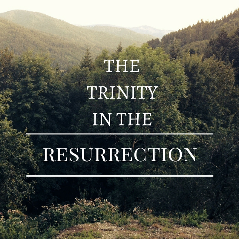 The Trinity in the Resurrection
