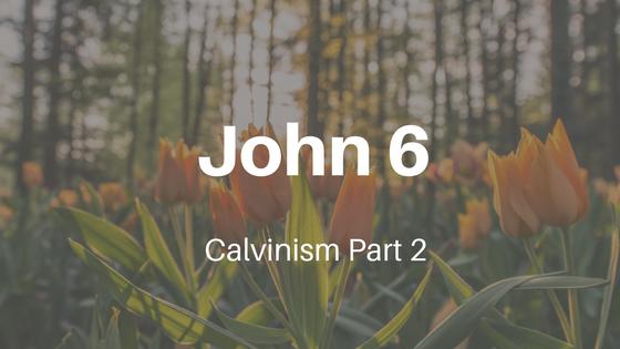 Calvinism Part Two: John Chapter Six