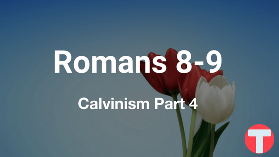 Calvinism Part Four: Romans 8 and 9