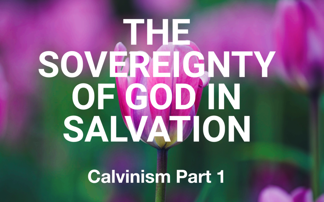 Calvinism Part One: The Sovereignty of God in Salvation